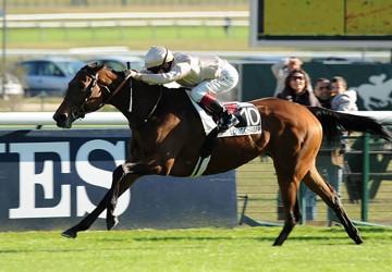 182-BeFabulous-23102011-PrixRoyalOak-Longchamp-SD-02-PG-resized