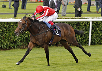 """ARDAD (Frankie Dettori) beats THE LAST LION (right) in The Pepsi Max Flying Childers Stakes Doncaster 9 Sep 2016 - Pic Steven Cargill / Racingfotos.com  THIS IMAGE IS SOURCED FROM AND MUST BE BYLINED """"RACINGFOTOS.COM"""""""