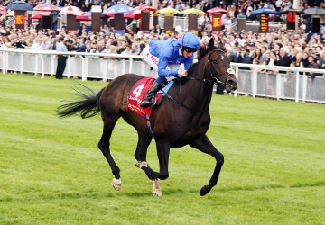 "Jack Hobbs and William Buick winning ""The Dubai Duty Free Irish Derby"" at the Curragh - Alain Barr 27.06.2015"