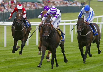 Newbury  18/7/09. Shadwell Stakes. Won by No2 High Standing - Ryan Moore.