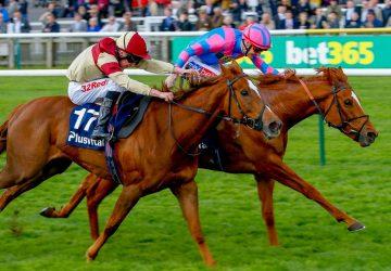 Red Tea – Kilboy Estate Stakes Gr.2